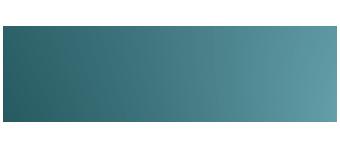 Newsletter Wild East Logo