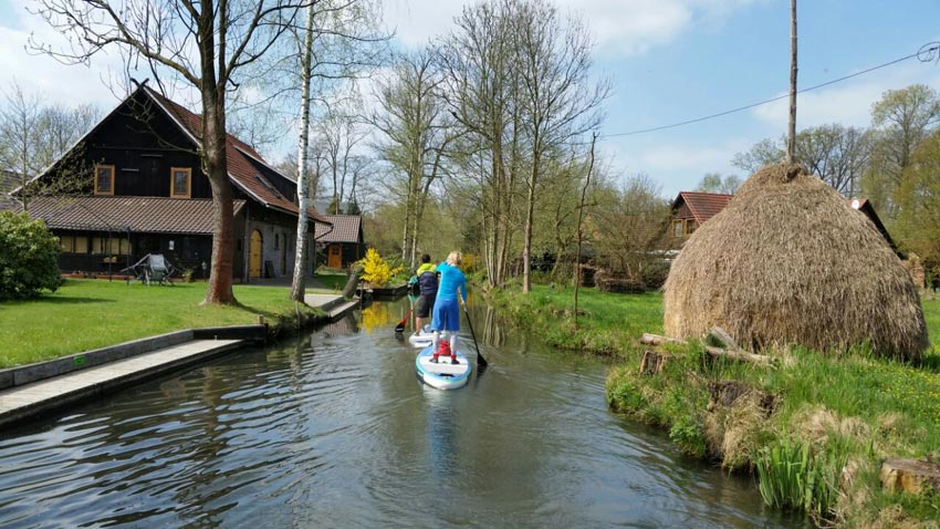 Spreewald SUP Tour - Wild East Stand Up Paddling