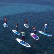 Elbe SUP Tour Dresden - Wild East Stand Up Paddling